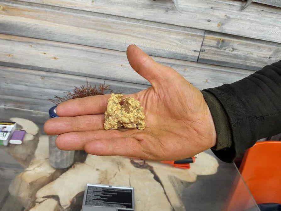 Mika Telilän tiistaina puolenpäivän aikaan kaivama isomushippu on merkittävä kultalöydös koko Lapin kullan historian ajalta. Isomushippu kaivettiin ylös Lemmenjoen Puskuojalta. Hippu ei ollut ensimmäinen iso kultahippu Telilän kaivu-uralla.