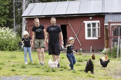 Lepolan tilalla pääsee nyt rapsuttelemaan ja ruokkimaan kotieläimiä – Janne Immosen ja Taina Hulanmäen kova työ palkittiin, kun kotieläinpiha avattiin kesällä Haukiputaalla