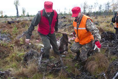 Lukijalta: Vuosimaksut uhka metsästysseuroille