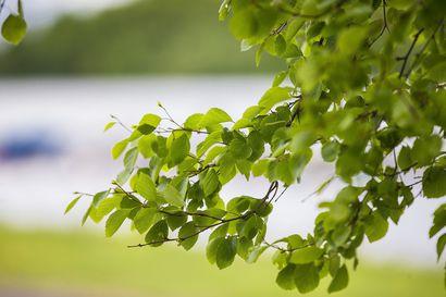Lukijan runo: Muistojen kesiä