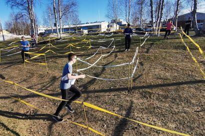 Suunnista nyt labyrinttiin – Kesän Pölkky-rasteilla Kuusamossa on mahdollisuus kokeilla uutta