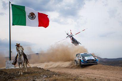 Sebastien Ogier juhli voittoa Meksikossa – Teemu Suniselle uran kolmas palkintosija