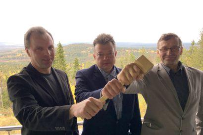 Yli 50 ehdolla Metsänhoitoyhdistyksen valtuustoon – postiäänestys käynnistyy marraskuun alussa