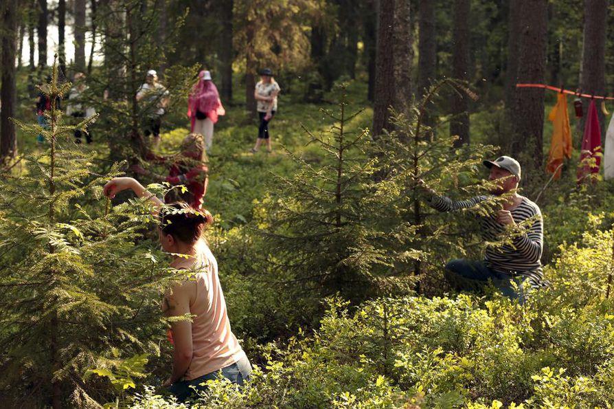 Metsäbaletin alussa pienet näreet alkavat väristä tanssijoiden Satu Rinnetmäki, Laura Koistinen ja Saku Koistinen käsissä. Äänilähteistä vastaa Vespa Laine ja Fern Orchestra, jonka instrumentteina toimivat kasvit ja mikro-organismit.
