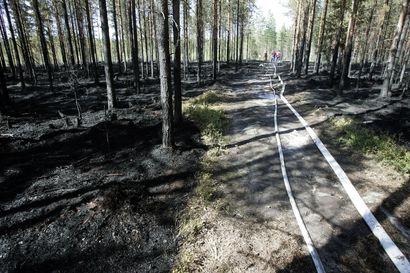 Sisäministeriö myönsi metsäpalojen lentotähystykseen 500 000 euroa lisämäärärahaa – Pohjois-Suomen aluehallintovirasto järjestää koko Suomen tähystyslennot