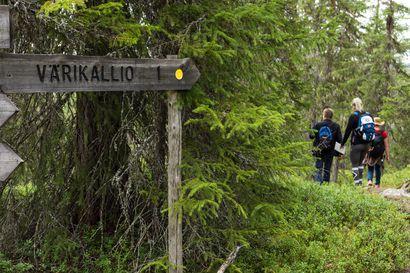 Metsähallitus rauhoittelee: Ehdotetut pienet rajoitusalueet eivät ole merkittäviä metsästysalueita