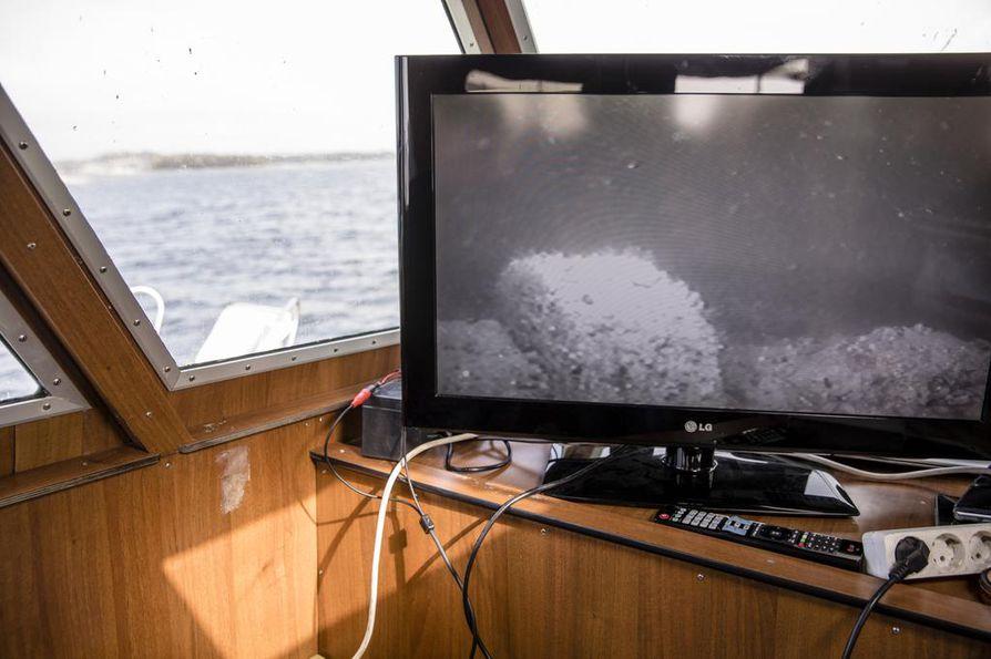 Veden pinnan alla, kymmenen metrin syvyydessä on oma hiljainen maailmansa.