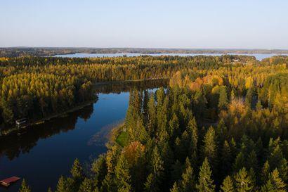"""Metsäteollisuuden Mäkelän puheenvuoro: Hiilineutraaliuden tavoittelu saa kummallisia piirteitä – """"Nielun siirtyminen yhdeltä omistajalta toiselle ei ilmastonmuutosta ratkaise"""""""
