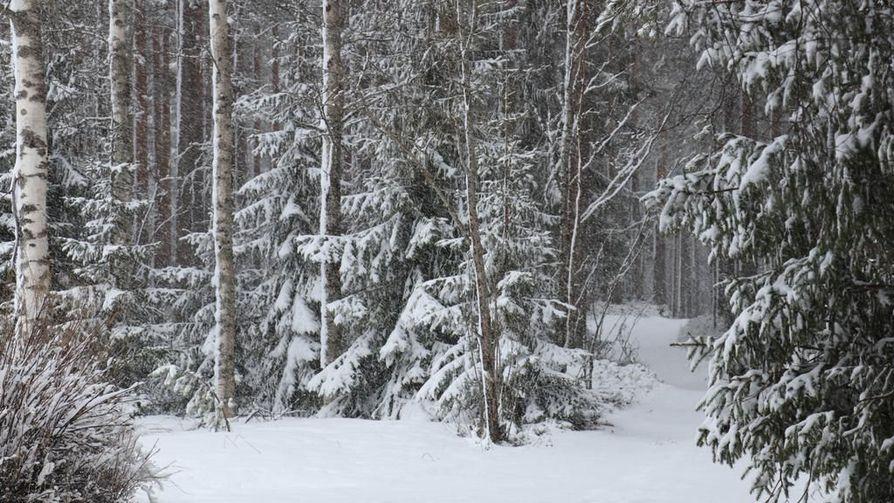 Äitienpäivän maisema oli Pohjois-Suomessa paikoin poikkeuksellisen jouluinen.