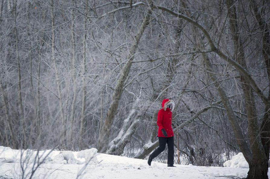 Suomessa vallitsee kylmä pohjoisenpuoleinen virtaus. Tänään tuuli voimistuu ja lisää pakkasen purevuutta.