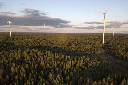 Metsähallitus suunnittelee Simon pohjoisosaan suurta 40 voimalan tuulipuistoa
