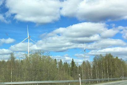 Metsähallituksella keskeinen rooli matkalla kohti hiilineutraalia Suomea – Uuden ilmasto-ohjelman tavoitteena on hiilinielujen ja -varastojen vahvistaminen sekä tuulivoiman tuotantokapasiteetin moninkertaistaminen valtion alueilla