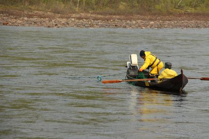 Saamelaiskäräjät haluaa Suomen valtion irtisanovan Tenon kalastussopimuksen – sopimus loukkaa alkuperäiskansan oikeuksia ja aiheuttaa haittaa perinteiselle kalastukselle