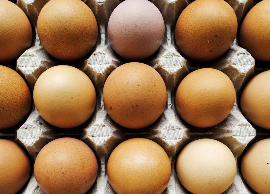 Kuinka suuri on Keski määrin munaa