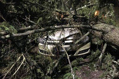Korvausehdoissa on merkittäviä eroja vakuutusyhtiöiden välillä – Osa korvaa keski- ja toiset puuskatuulen perusteella myrskyvahinkoja