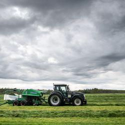 Lapin viljelijöiden rehuanalyysituloksissa todella suuret erot, miten käy Koillismaalla? – Katastrofaalisen nopea kasvu tuottaa enemmän siementä kuin versoa