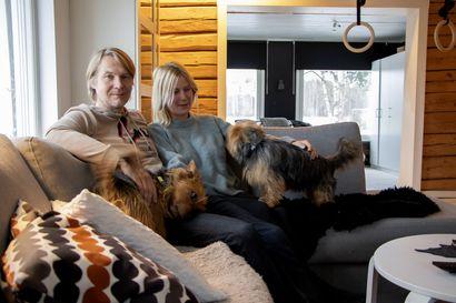 Levollisuus astui Katja Juntusen elämään hänen muutettuaan Suvipuron tilalle - Elämä maaseudulla on rauhoittanut kiireisen aikataulun ja palauttanut yöunet
