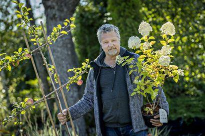 Koronakevät kiihdytti entisestään vilkasta puutarhabuumia – jo viime vuonna kotipuutarhoihin käytettiin 577 miljoonaa euroa