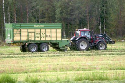 Maataloustyökoneiden teillä liikkuminen kannattaa huomioida sadonkorjuuaikana