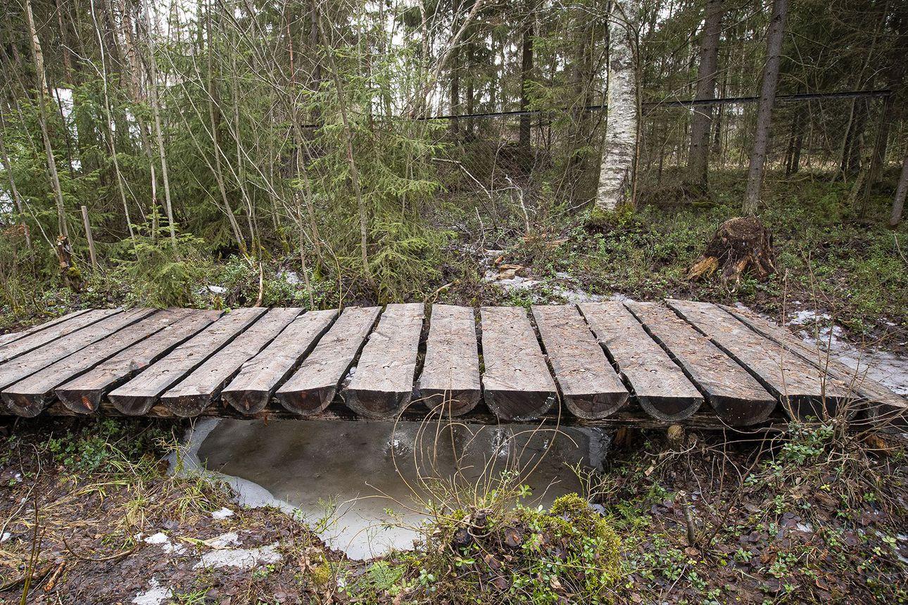 Suomen aiheettomin silta