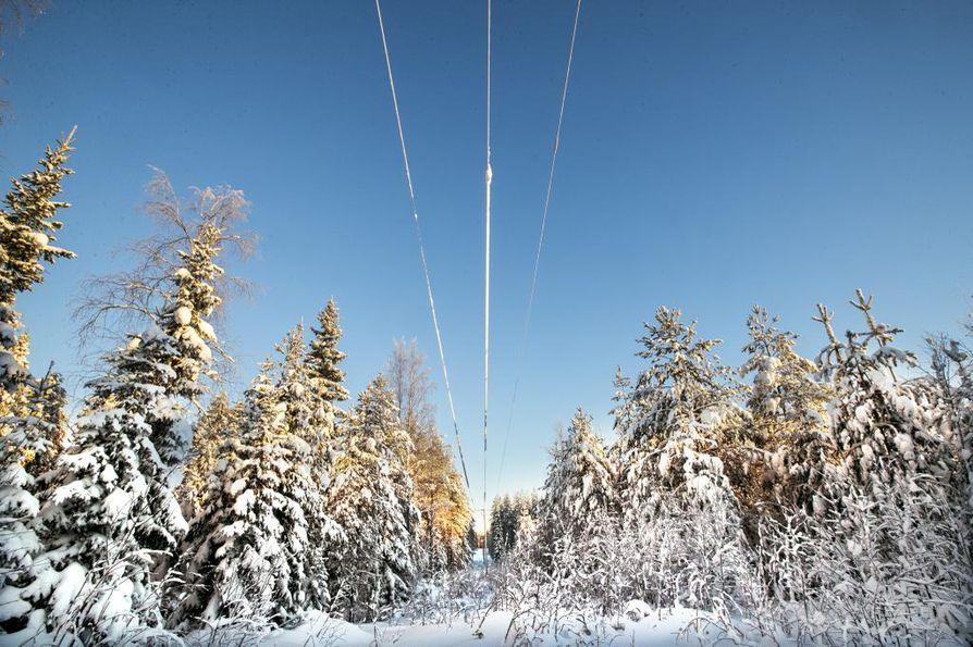 Runsas lumi on riski ilmajohdoille. Kuvassa vuoden 2018 lumikriisin jälkeen avarrettua johtokatua Hyrynsalmen Kokkolassa viime talvena.