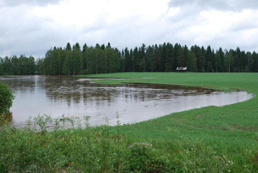 Matkanivantien varressa olevat pellot ovat muuttuneet järviksi.