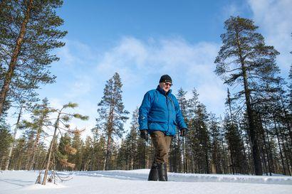 Miljoona hehtaaria korkeiden luontoarvon metsiä Lappiin – Sitten selvisi, että se olikin vain leveällä pensselilllä piirretty kirjoituspöytätyö