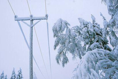 Kuura painoi sähkölinjaa ja aiheutti sähkökatkon 130 taloudelle Vanttausjärven suunnalla – vika kesti pari tuntia
