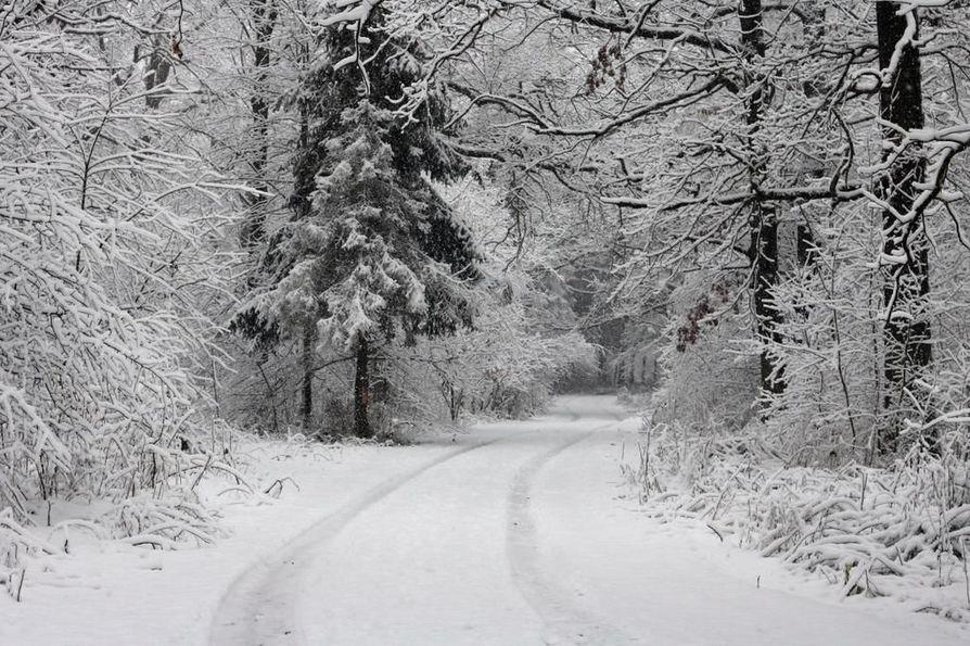 Keskitalvella Euroopan kylmin vyöhyke ulottuu ennusteen mukaan Suomesta Ukrainaan. Kylmyyden tuo Siperiasta saapuva, jäätävä virtaus.