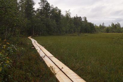 Viiankiaavan rengasreitin pitkospuut uusittiin Sodankylässä