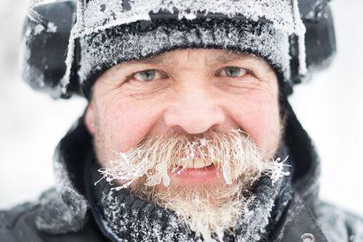 """Kuuraparta kesyttää jään – Näin lumesta ja jäästä syntyy osaajan käsissä ravintola, panda tai baaritiski: """"Voi käyttää myös silitysrautaa"""""""