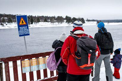 Rovaniemen keskustan jokijäät ovat vaarallisia koko talven – vahinkoja estetään aidalla, varoituskylteillä, esitteillä ja vapaaehtoisella partioinnilla