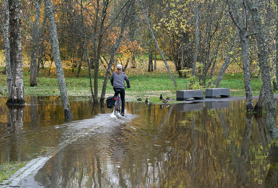 Vesi nousi myös Ainolanpuistoon keskiviikkona.