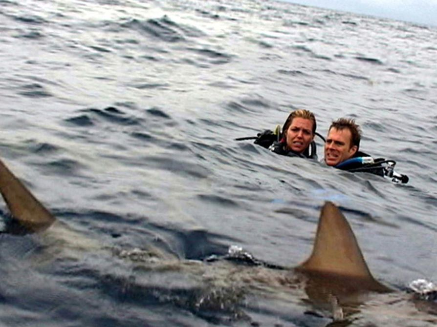 Aviopari Blanchard Ryan ja Daniel Travis unohtuu keskelle avomerta Open Water -elokuvassa.