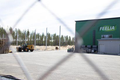 Pyhännän kunta antoi lausunnon Feelia Oy:n ympäristöluvasta