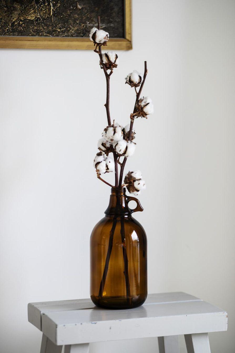 Puuvilla ja vanha ruskea lasipullo sopivat hyvin yhteen.