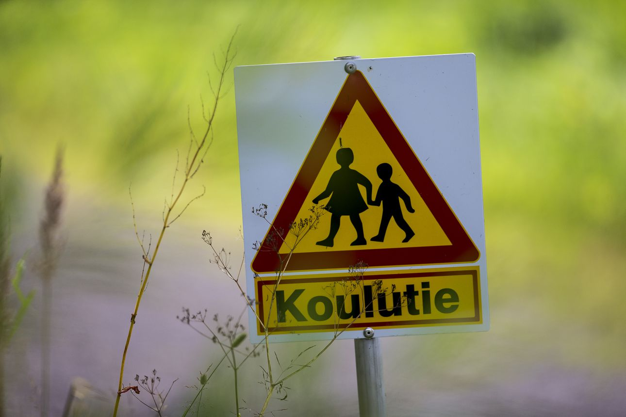 """Kysely: Lasten koulumatka koetaan melko turvalliseksi – kännykkä kädessä kulkeva lapsi on riski: """"Viimeiset 100 metriä on usein vaarallisin kohta koulutietä"""""""