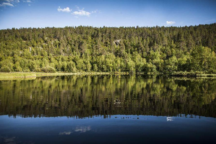 Lemmenjoki virtaa läpi Lemmenjoen kansallispuiston.