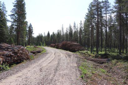 """Lukijalta: """"Irtouiton jälkeen rakennettu metsätieverkostomme alkaa olla saneerauskunnossa"""" – Tuleva syksy  näyttää, millainen on suomalaisen ylitysrakentamisen tämän hetkinen taso"""