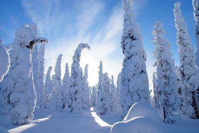 Luminen talvi ja helteinen kesä viime vuoden erikoisuudet – metri lunta ja 20 hellepäivää vuoden 2018 ennätykset