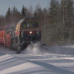 Tällainen on venäläinen lumensyöjä - katso video monsteriveturista