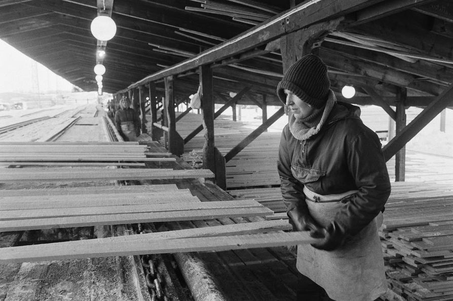 Helena tekee samaa työtä, jota hänen äitinsäkin on aikanaan tehnyt: lajittelee puuta Martinniemen sahalla.