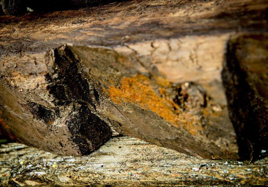 Vanhaa puuta: Hylyn arvioidaan olevan proomu 1600–1700-lukujen taitteesta. Se löytyi elokuun puolivälissä hotellin takaa remonttiin liittyvien kaivujen yhteydessä.