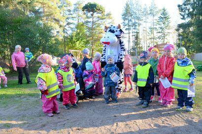 Lehmä luomukierroksella lasten luona