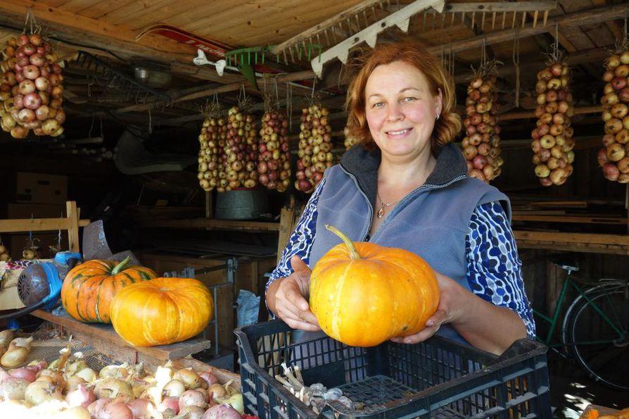 Galina Kulak myy oman Uljani-tilan satoa eteläisen Kasepään raitin varrella. Sipuliletti tehdään sitomalla sipulinvarret narun avulla tiiviiksi letiksi.