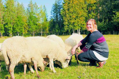 Mari Kälkäjä siirtyi keittiön ja navetan väliltä politiikkaan – valtuuston puheenjohtaja arvostaa avoimuutta