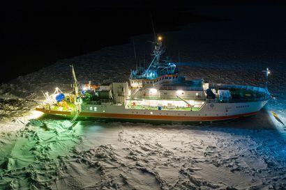 """Perämerellä aloitettiin pysyvä vedenalaisen melun mittaus – """"Melu häiritsee merieläinten viestintää"""""""