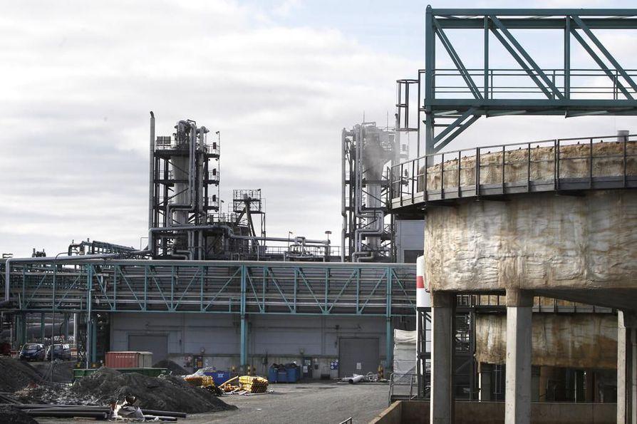 Arkistokuva Terrafamen tehdasalueen työmaalta.