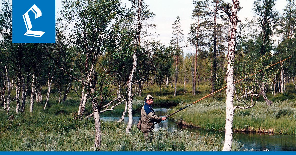 Suutari Rovaniemi