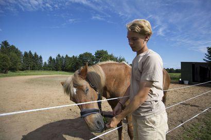 Eero haluaa jakaa iloa eläimistä –Kesäyrittäjän kotipihassa vieraili kesän aikana tuhansia kävijöitä